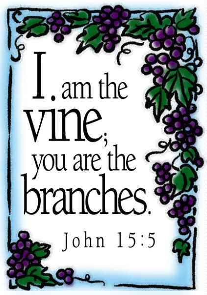 The Vine And Branches A Parable