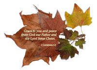 Grace to you and peace from God our Father and the Lord Jesus Christ. --1 Corinthians 1.3