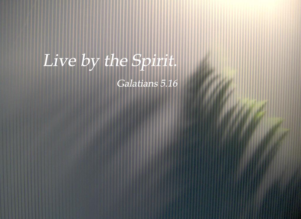 Isaiah 55.8