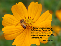 Whoever believes in me believes not in me but in him who sent me. And whoever sees me sees him who sent me. --John 12.44-45