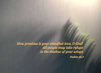 How precious is your steadfast love, O God! All people may take refuge in the shadow of your wings. -- Psalms 36:7